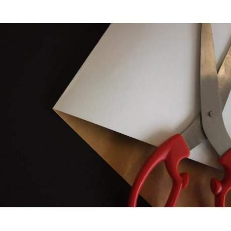 Carton contrecollé blanc sur brun -55x75- 10 plaques