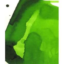 Encre Albo Vert anglais - 250 ml